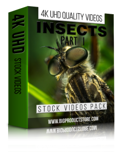 Insects4KUHDStockVideosPart1