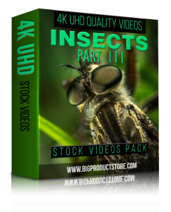 Insects4KUHDStockVideosPart3