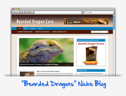 Bearded dragon Care Niche Blog