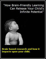 Brain Based Research And Your Child
