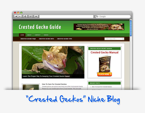 Crested Gecko Guide Niche Blog