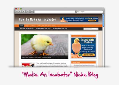 How To Make An Incubator Niche Blog