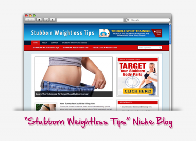 Stubborn Weight Loss Tips Niche Blog
