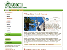 Top Secret WP Theme