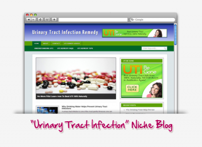 Urinary Tract Infection Niche Blog