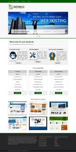 WordPress Premium Business Theme # 3