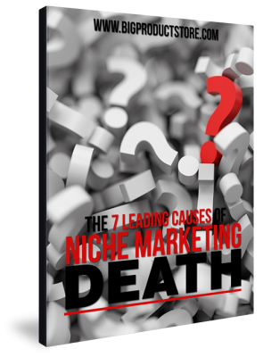 EBOOKThe7LeadingCausesOfNicheMarketingDeath